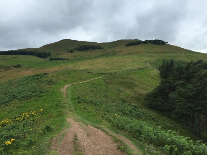 Up towards Turnhouse Hill