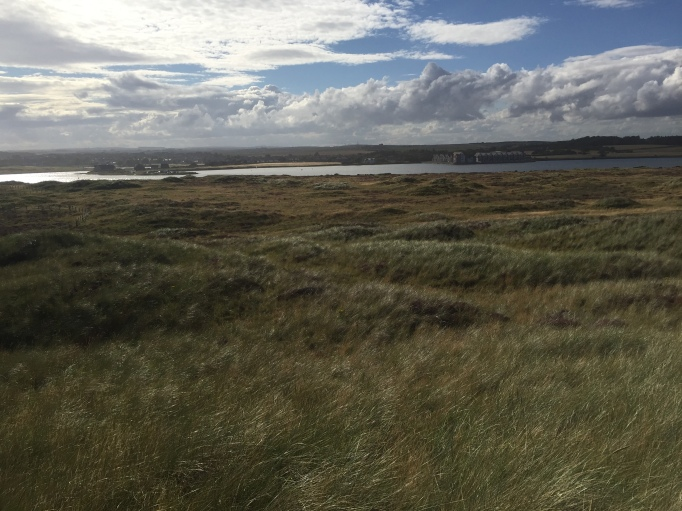 Looking towards the Ythan Estuary