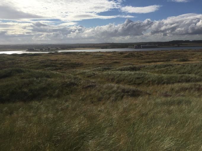 Looking towards the Ythan Estuary